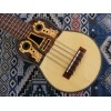 Professional Electroacoustic Charango with B-Band T35